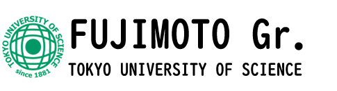 Fujimoto group